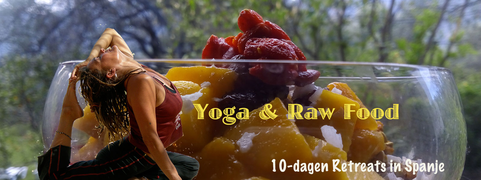 Yoga & Raw Food Retreats